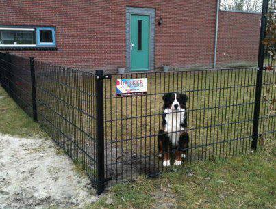 Bakker Hekwerk hond achter Hek